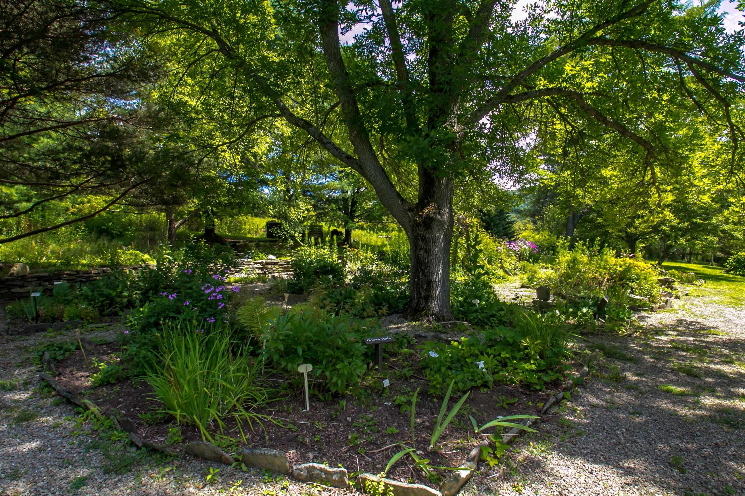 Lowe Herb Garden